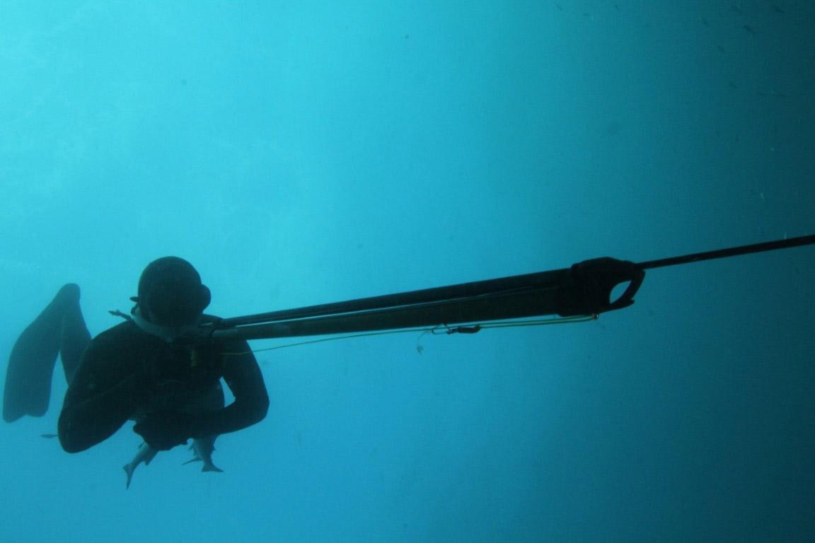 pesca_submarina_jody_lot