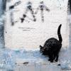 Gato Assanhado - Bordallo Pinheiro