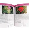 200-plantas-sw-alentejano-e-costa-vicentina